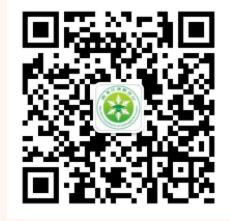 zrg2021062402.png